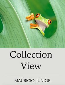 Baixar CollectionView: iOS Developer 5 pdf, epub, eBook